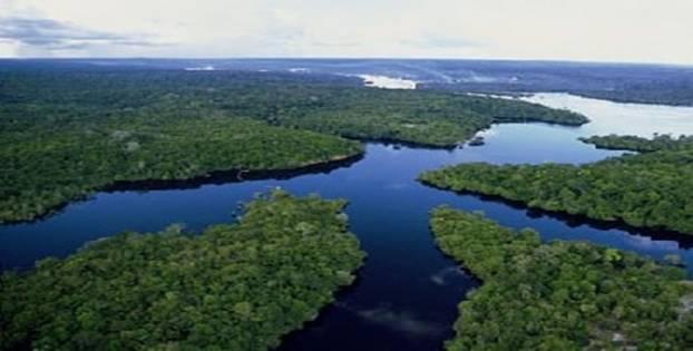 Imagem: amazoniaca