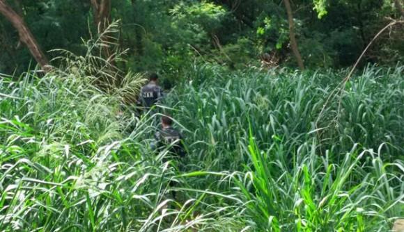 Primavera do Leste| PM procura corpo de homem esfaqueado e enterrado na mata