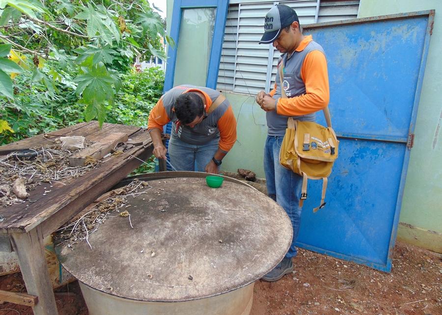 Imagem: dengue