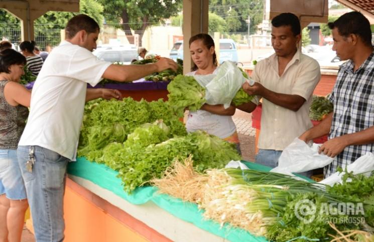 Consumidor comprando verduras na feita.Foto:Varlei Cordova/Agoramt