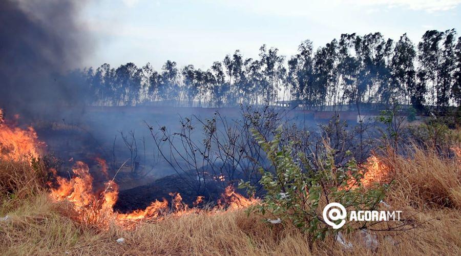 Imagem: Fogo destroi vegetacao atras da santana textil 02 Governo decreta emergência ambiental e adianta período proibitivo de queimadas