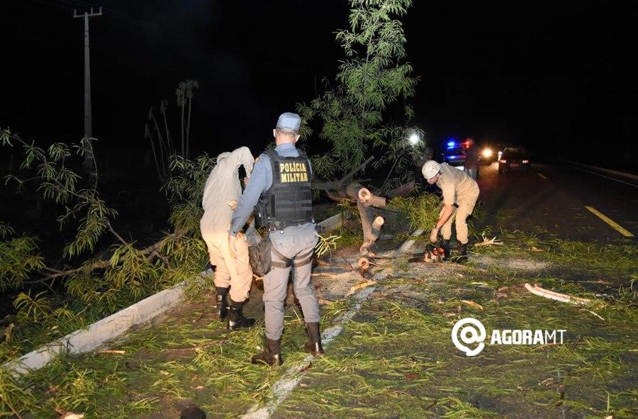 Imagem: Bombeiros e policiais trabalhando na pista Morador de Rondonópolis fica ferido ao colidir com moto em árvore caída na pista