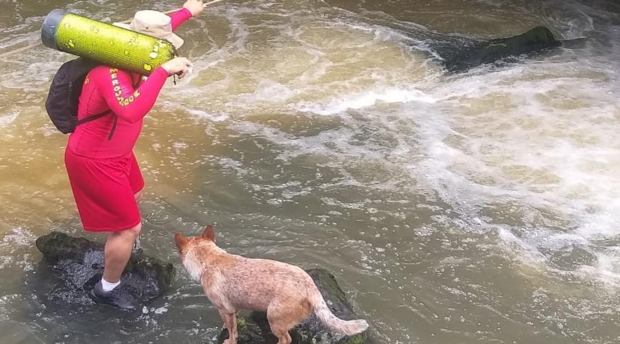 Imagem: 55bd80bc c331 4004 bfb4 13313ce45ae4 Bombeiros retomam buscas por jovem levado por correnteza no Rio Ponte de Pedra
