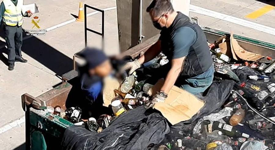 Imagem: cats 6 Imigrante é encontrado escondido em saco de lixo tóxico na Espanha