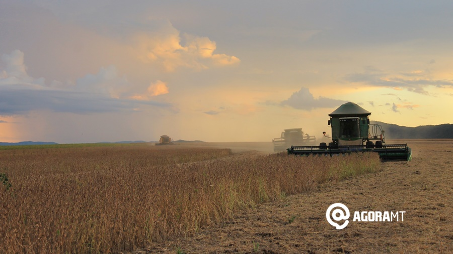 Imagem: colheita soja agronegocio agricultura Foto Vandreia de Paula Rondonópolis exportou mais de 1 bilhão de dólares em 5 meses