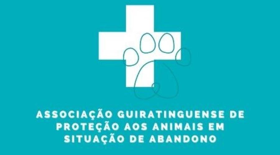 Imagem: 04ce144a e765 45a3 87e8 b085a0e82197 'Associação de Proteção aos Animais' busca apoio para instituição