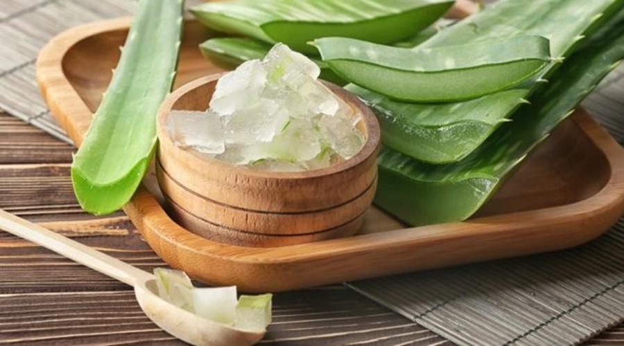 Imagem: BABOSA 5 receitas caseiras para queda de cabelo