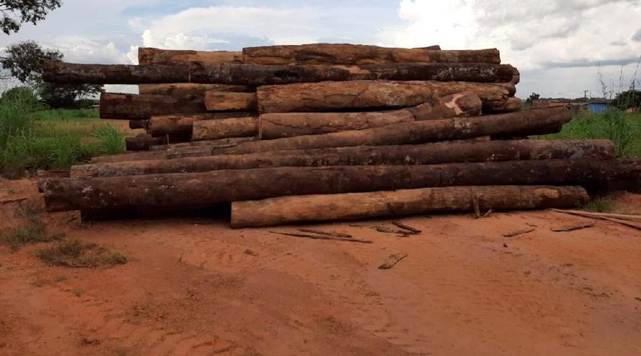 Imagem: Toras de madeira apreendidas e doadas Sema doa madeira apreendida para construção de pontes