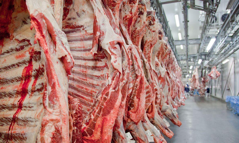 Imagem: carne2 Agora Agro| Abate de fêmeas cai 26,61% em MT
