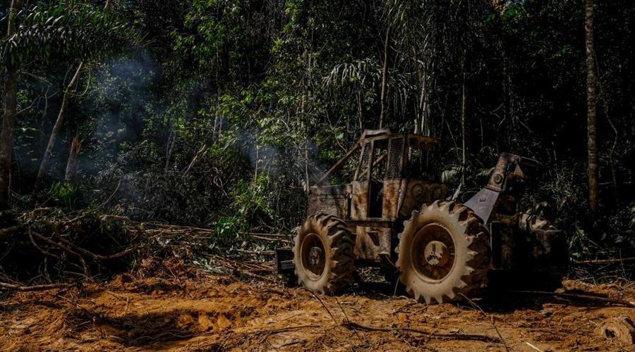 Imagem: Desmatamento 1 Governador lança Operação Amazônia contra crimes ambientais