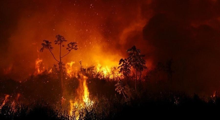 Imagem: queimadas Cientistas alertam para incêndios na Pantanal e Amazônia