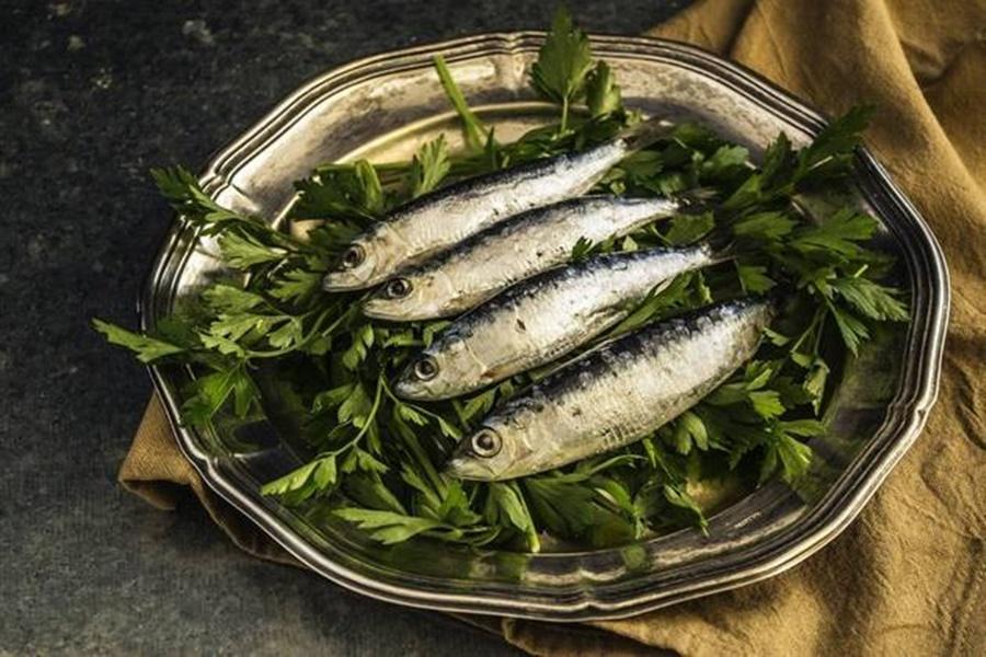 Imagem: sardinha O consumo regular da sardinha em lata é eficaz na prevenção de diabetes tipo 2