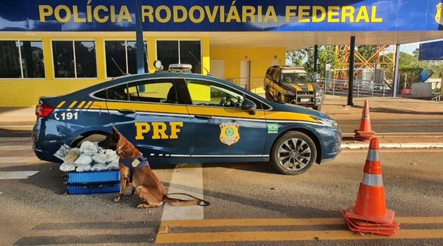Imagem: 00b74f34 c62f 4328 80ba c34095ce0e33 Jovem é preso transportando droga em bagagem