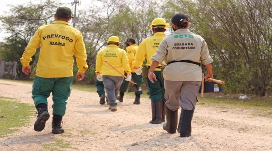 Imagem: Brigada comunitaria Primeira brigada comunitária no Pantanal de MT, será formada neste fim de semana