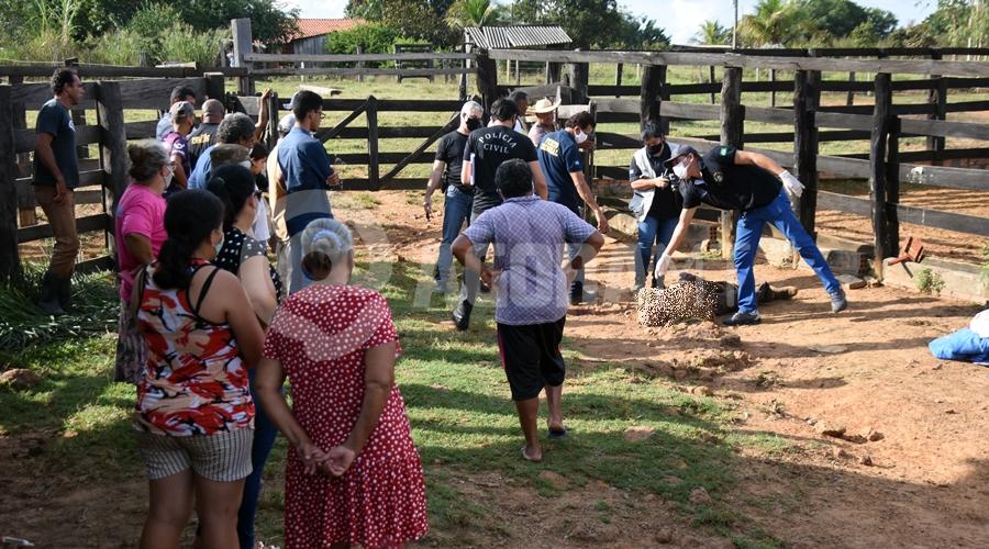 Imagem: Vitima encontrada sem vida em cural de sitio Sitiante é encontrado morto após ser chifrado e pisoteado por vaca