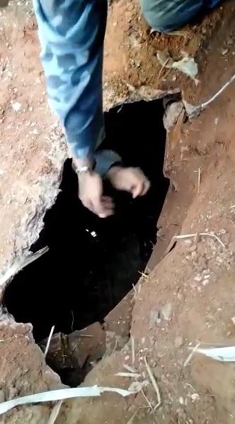 Imagem: cats Esconderijo de drogas é descoberto em buraco e trio é preso por tráfico
