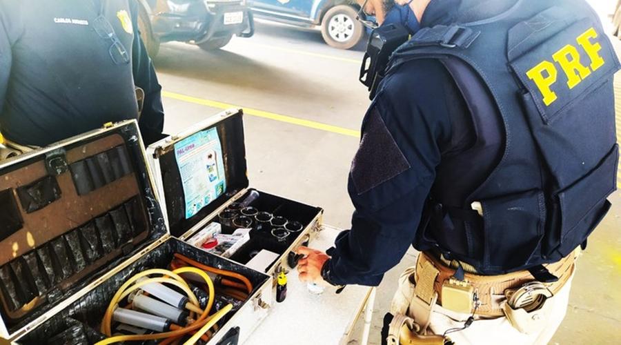 Imagem: d71c52cf e82b 4889 9afc 40426f164927 PRF e IBAMA realizam operação integrada 'Meio Ambiente Seguro III'