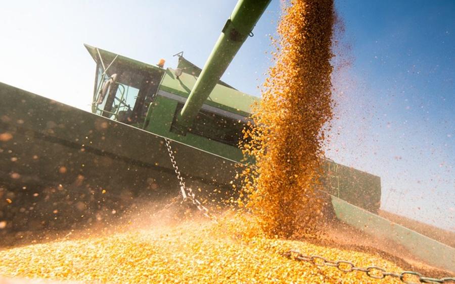 Imagem: setor agropecuario soja PIB do setor agropecuário registrou alta de 5,7% no primeiro trimestre