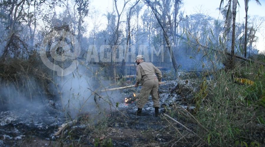 Imagem: Bombeiro trabalhando com abafador para combater o fogo Incêndio atinge aldeia e fogo é controlado com ajuda dos índios