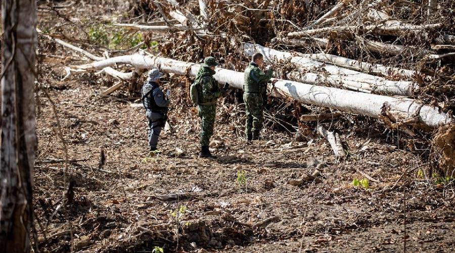 Imagem: CLAS9682 Operação Amazônia | Mais de R$ 900 milhões em multas são aplicadas em 7 meses