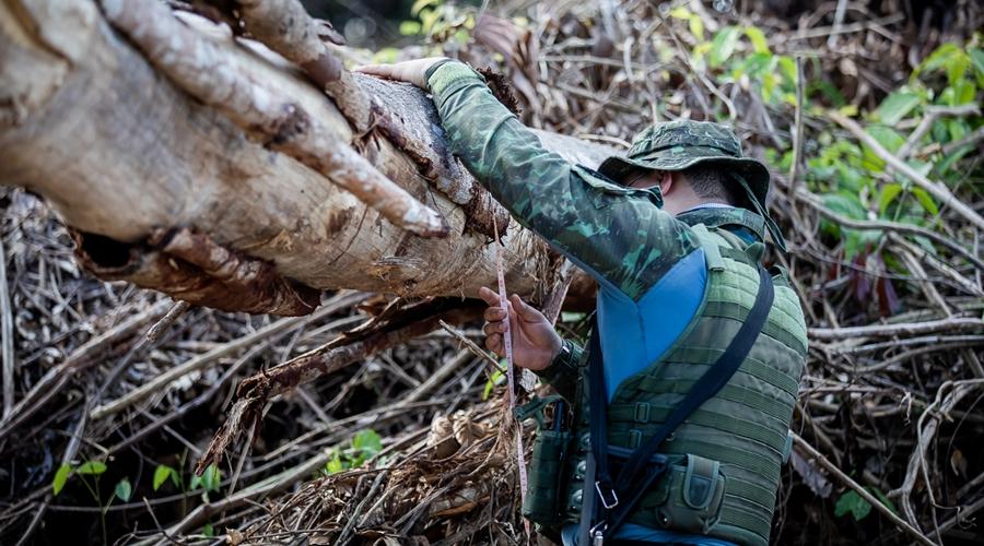 Imagem: CLAS9698 Operação Amazônia | Mais de R$ 900 milhões em multas são aplicadas em 7 meses
