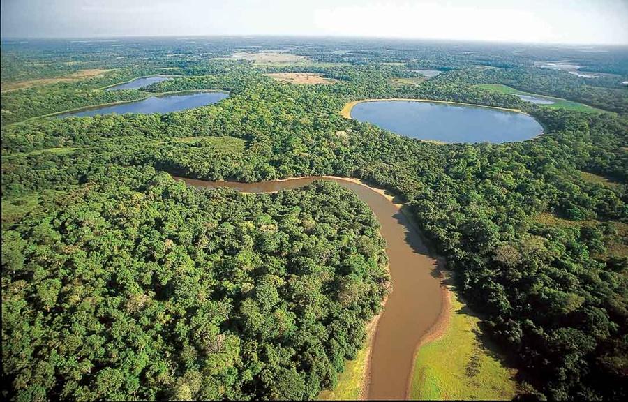 Imagem: Pantanal de Mato Grosso Registro de Propriedades no MT é destaque no relatório do Banco Mundial