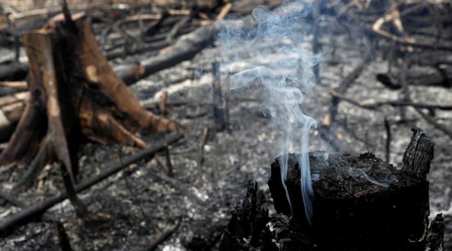 Imagem: naom 5d5fcc9d1cbde Amazônia tem junho com maior número de queimadas desde 2007