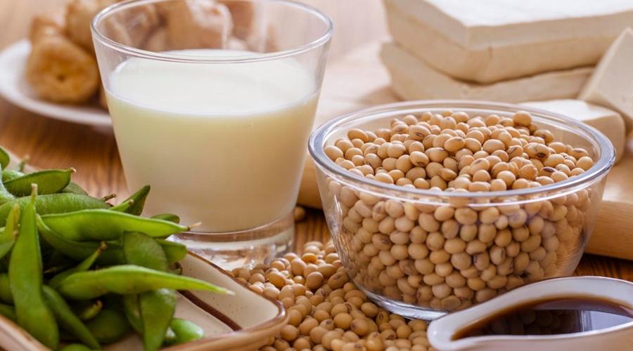 Imagem: produtos soja Soja convencional se torna cada vez mais um nicho seleto de mercado para produtores