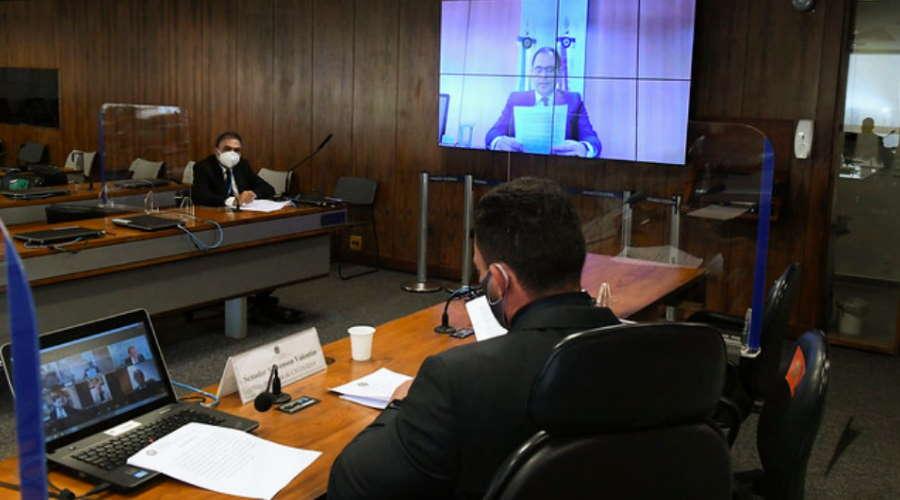 Imagem: sesao ctcovid virt Negacionismo causou mortes, diz presidente da ABI em audiência no Senado