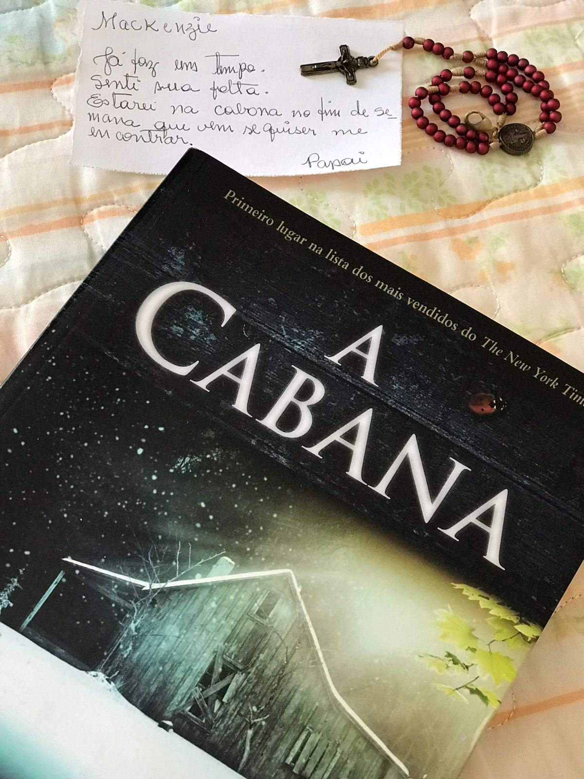 Imagem: livro a cabana.jpeg3 Vale a pena ler A Cabana? | Agora Livros