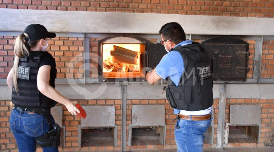 Imagem: 4bad6054 d50a 4964 bb70 8fbc412be1b1 DERF realiza 4ª incineração e queima 800 kg de entorpecentes