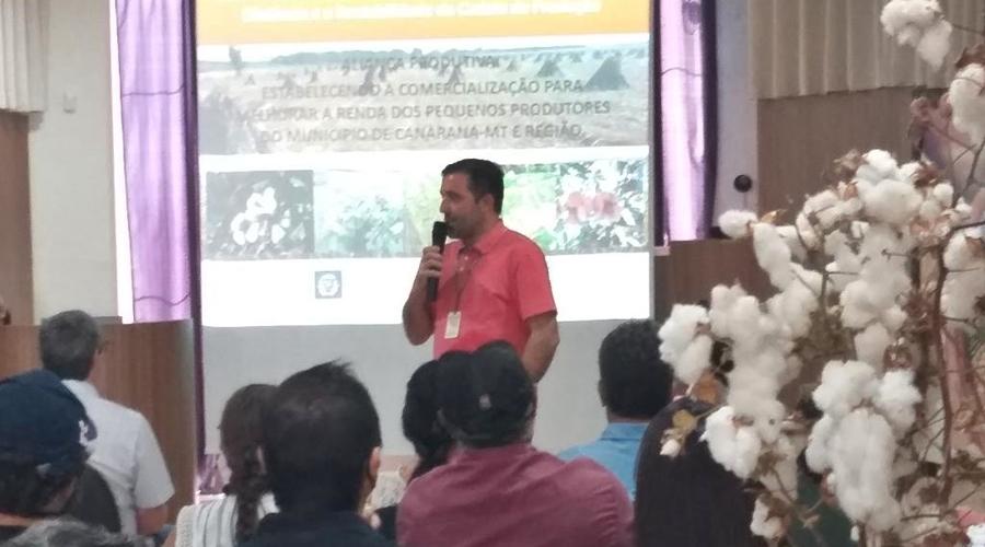 Imagem: Canarana1 Produção de algodão agroecológico é destaque e atrai investidores do segmento