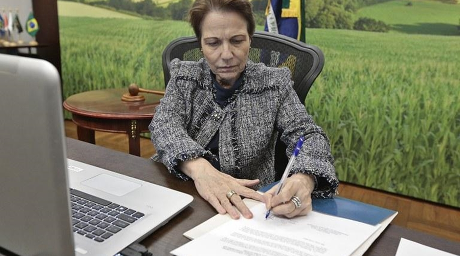 Imagem: Ministra da Agricultura Tereza Cristina Ministra destaca que todo o país vai ganhar com a construção da 1ª Ferrovia Estadual