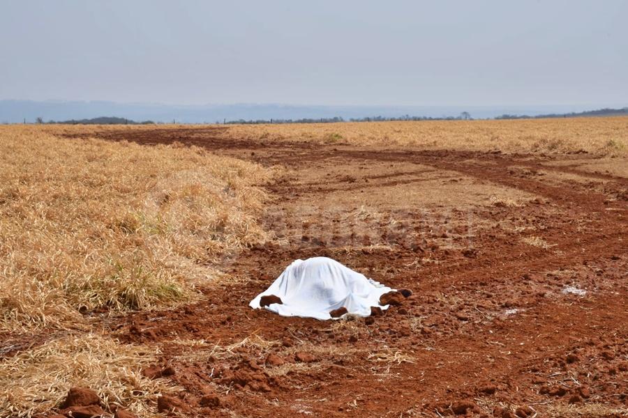 Imagem: corpo caido Corpo é encontrado em área de plantação na BR-163 em Rondonópolis