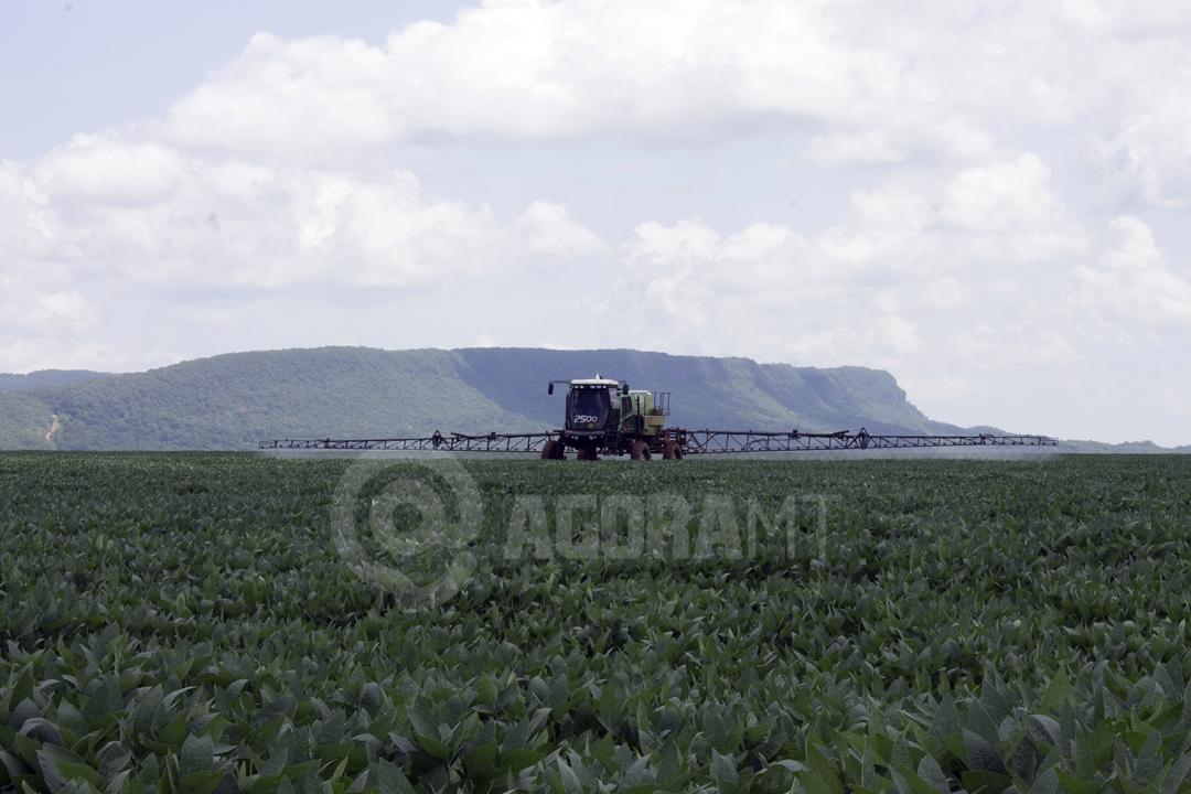 Imagem: soja plantio pulverizacao foto vandreia de paula Exportação de produtos agrícolas aumentam somado ao uso de bons adjuvantes